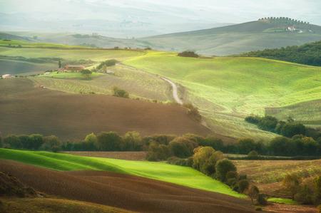 san quirico: The beautiful Tuscan countryside around San Quirico d