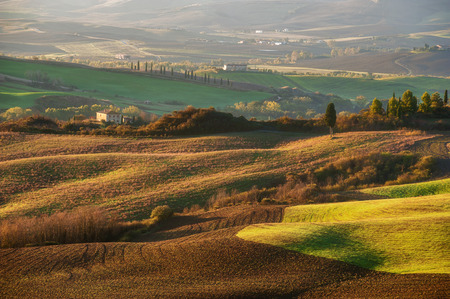 san quirico: The beautiful Tuscan countryside around San Quirico dOrcia, Italy Stock Photo