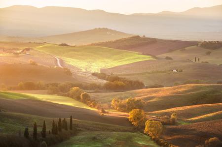 san quirico dorcia: The beautiful Tuscan countryside around San Quirico dOrcia, Italy Stock Photo