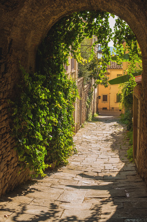 Old streets of greenery in medieval Tuscan town.