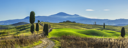 Tuscany sunny landscape, Italy. Standard-Bild