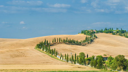 orcia: The old cypress road to the farm between fields in Tuscany, Italy Stock Photo
