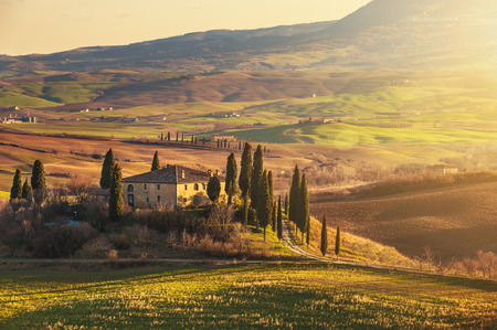 Beautiful Tuscany fields and landscape Фото со стока