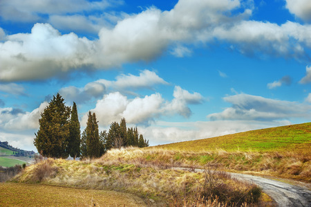 Beautiful landscape with road, green fields and blue sky in the background. photo
