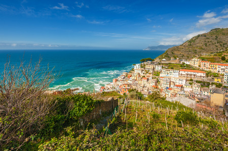Beautiful town on the coast of the Tyrrhenian Sea, full of color buildings Vernazza, Cinque Terre, Italy photo
