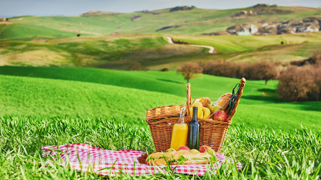 picnic cloth: Tuscan picnic on the green spring grass with landscape in the background