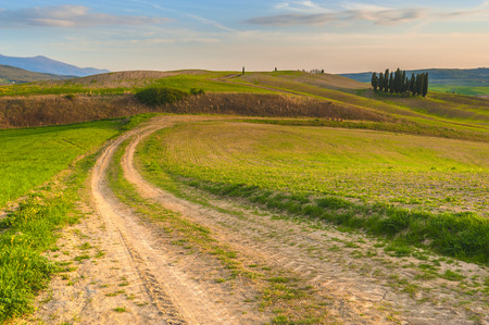 Beautiful fields, hills and roads of Tuscany, Italy photo