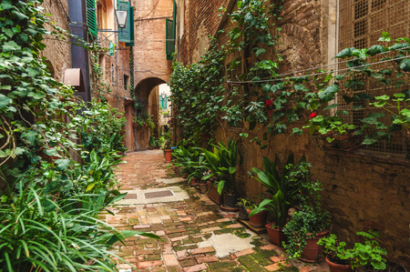 siena italy: Hidden streets of the ancient city of Siena, Italy
