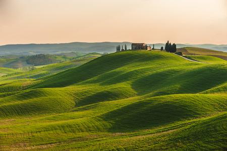 De lente in de velden van Toscane op de zonsondergang Stockfoto