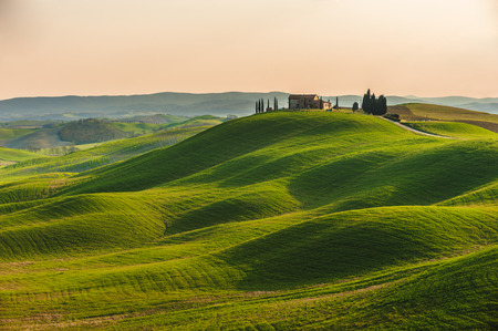 Spring in the fields of Tuscany in the sunset Фото со стока