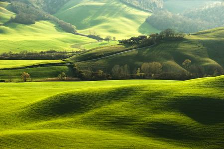 Pastoraal groen gebied met lange schaduwen in Toscane, Italië Stockfoto