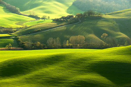 Pastoral green field with long shadows in Tuscany, Italy