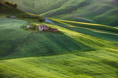 asciano: Crete Senesi place in and around Siena and Asciano in spring aura