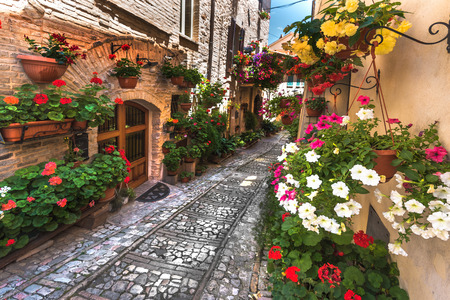 spello: Floral street in central Italy, in the small Umbrian medieval town, Italy