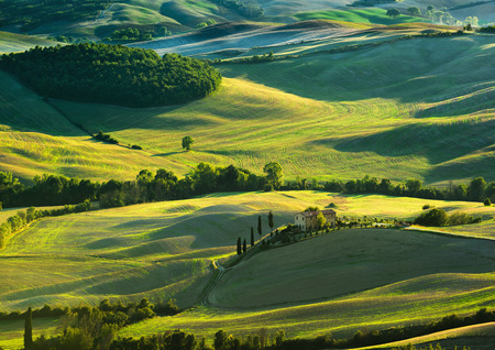 val d'orcia: Tuscan landscape the national park of Val dOrcia, a UNESCO heritage site Stock Photo
