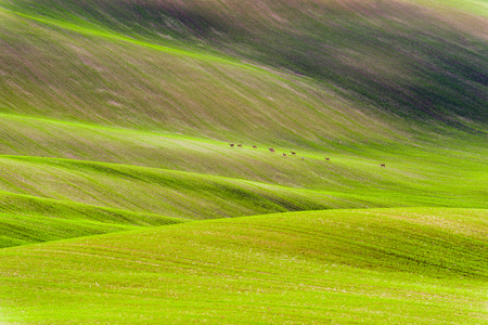moravia: Czech countryside, south Moravia. Stock Photo