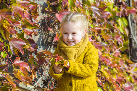 young leaves: Autumn leaves as a background for a portrait for a little girl.