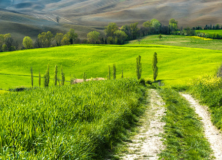 Lake irrigation fields in spring landscape of Tuscany.