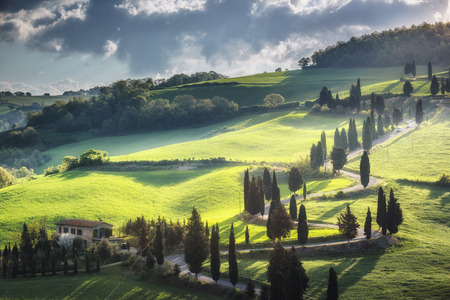 monticchiello: Magic light over twisted famous road in Italy.