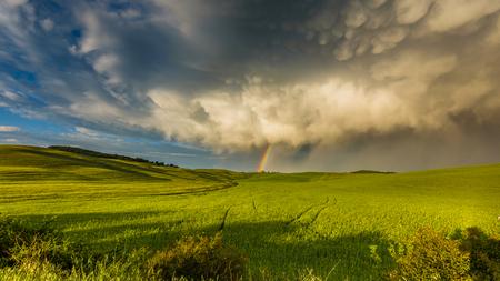 봄 비가 폭풍 후 필드 위에 무지개