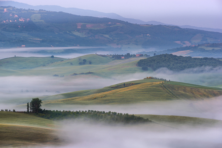foggy hill: Amazing scenery of idyllic countryside with rolling hills veiled in morning fog. Aerial view of hill on a foggy spring morning