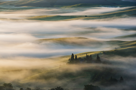 mists: Fantastic landscape in the mists of light painted. Spring landscape of Tuscany. Stock Photo