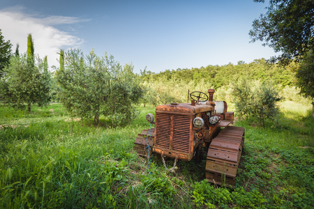 neglected: Old rusty tractor neglected under the tree