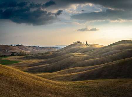 intelligently: Analogously and intelligently arranged wavy Tuscan field in the landscape. Stock Photo