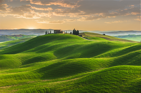 Spring in the fields of Tuscany in the sunset Stock Photo