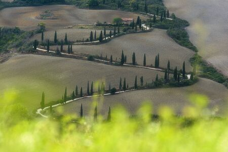 An unusual road between the Tuscan fields and landscapes. Stock fotó