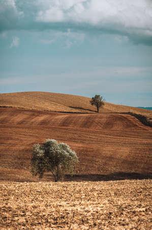 Autumn fall in the Italian land