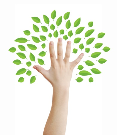 symbols  metaphors: Hand as a tree with green leaves concept