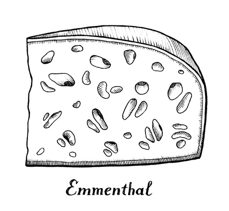 ink illustration: Ink drawing of Emmental cheese section, illustration