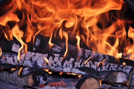 conflagrant: Firewoods burn in a stove