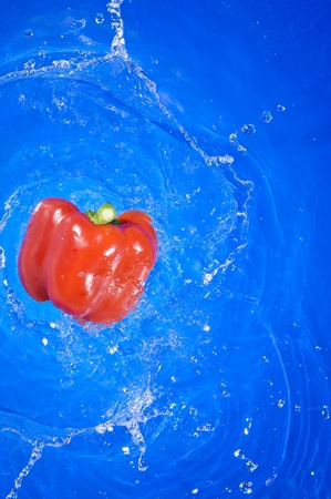 Red pepper falling on the fresh blue water  photo