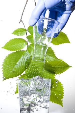 Retort and leaf on the white background Zdjęcie Seryjne - 11187131