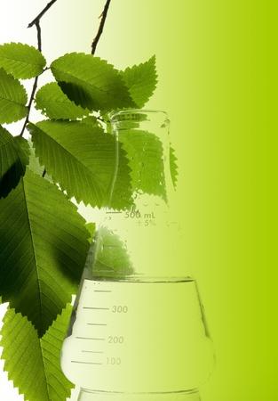 Retort and leaf on the white background Zdjęcie Seryjne - 11193210