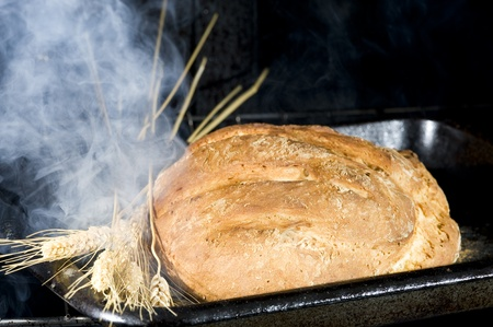 Fresh brean on the oven. Organic food Banque d'images