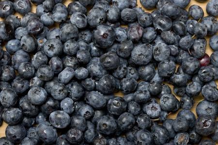 Backgound with sweet fresh blueberries Zdjęcie Seryjne - 11365053