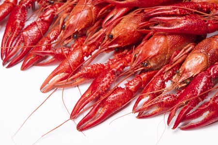 Red crayfish. Fresh seafood
