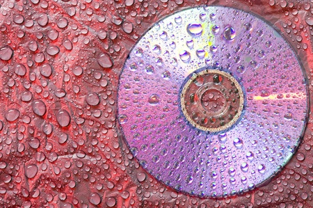 bluray: Water droplets on black plastic material with CD disk