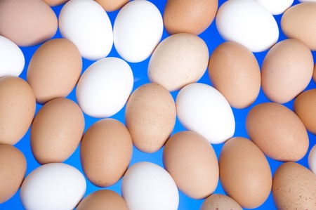 Chicken eggs,white and brown. Background with egg  photo