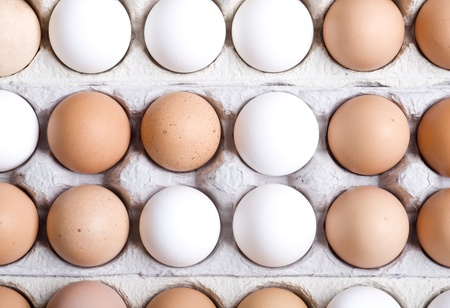 Chicken eggs,white and brown. Background with egg