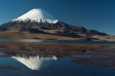 stratovolcano: National Park Lauca , lake Chungara and   snow cap volcano Parinacota