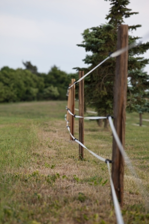 fencing wire: Electric fenced pasture on small farm Stock Photo