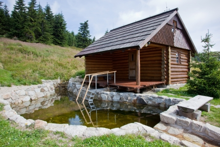 Sauna log cabin with pool