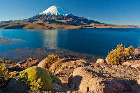 Lake Chungara with snowcap Parinacota volcano at background