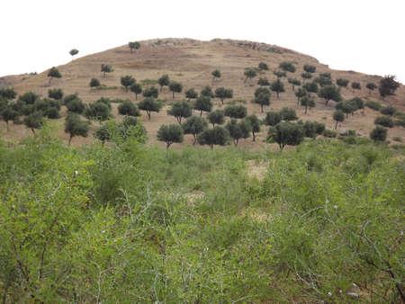 afrique du nord: Bulla Regia une des plus riches villes anciennes en Afrique du Nord - autour des excavations Banque d'images
