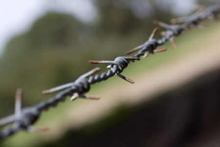 barbed wire that separates a prohibited area Stock Photo