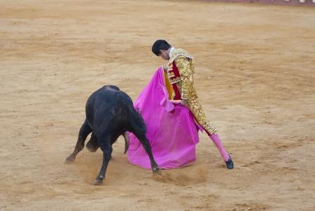 PUERTO SANTA MARIA, SPAIN - SEPTEMBER 02: The bullfighter Daniel Crespo fights in the Plaza del Puerto. September 2, 2012 in Puerto Santa Maria, Spain